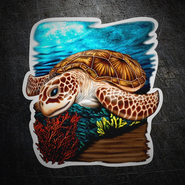 Car & Motorbike Stickers: Sea turtle