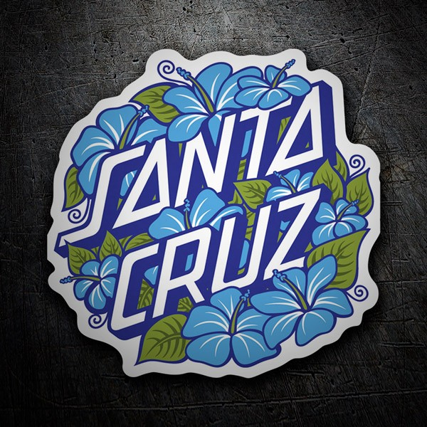 Car & Motorbike Stickers: Santa Cruz