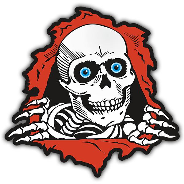 Car Amp Motorbike Stickers Skull