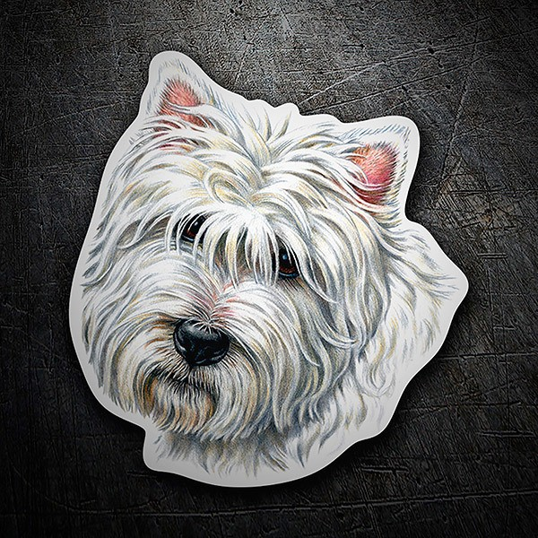 Car & Motorbike Stickers: West Highland Terrier