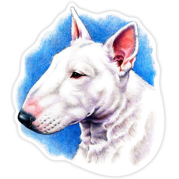 Car and Motorbike Stickers: White Bull