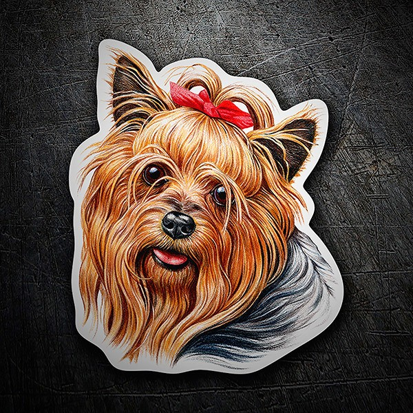 Car & Motorbike Stickers: Yorkie