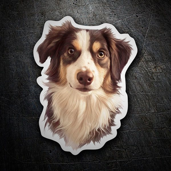 Car & Motorbike Stickers: Australian Border Collie