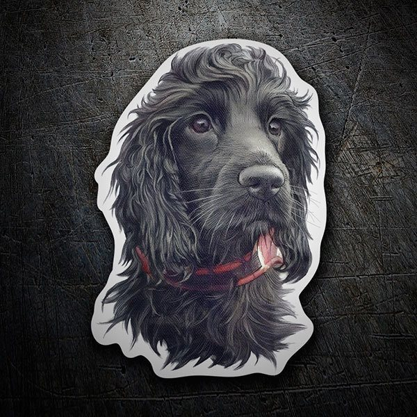 Car & Motorbike Stickers: Black Spaniel Cocker