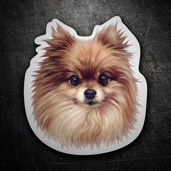 Car & Motorbike Stickers: German Spitz