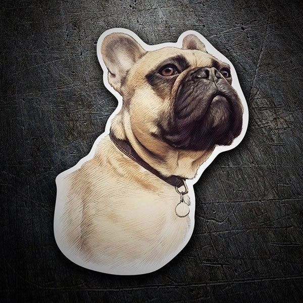Car & Motorbike Stickers: French Bulldog ochre