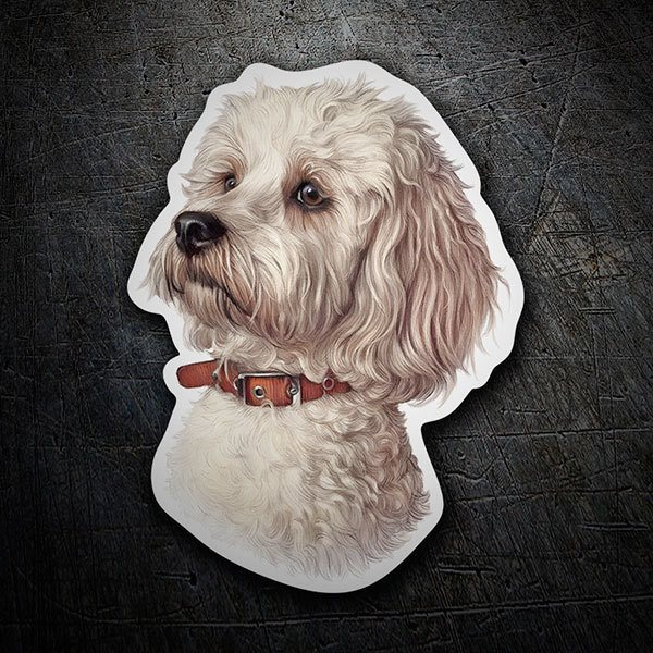 Car & Motorbike Stickers: White Maltese bichon