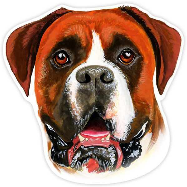 Car and Motorbike Stickers: Boxer