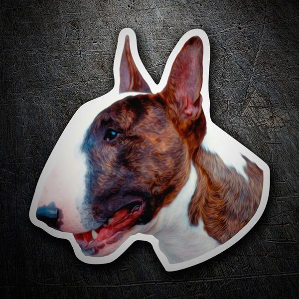 Car & Motorbike Stickers: English Bull Terrier