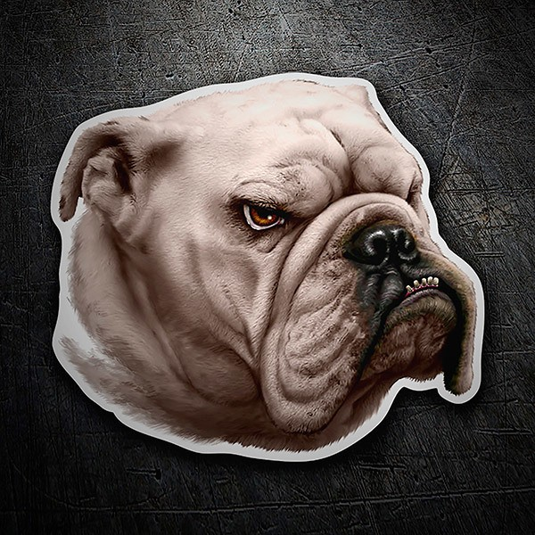 Car & Motorbike Stickers: Bulldog