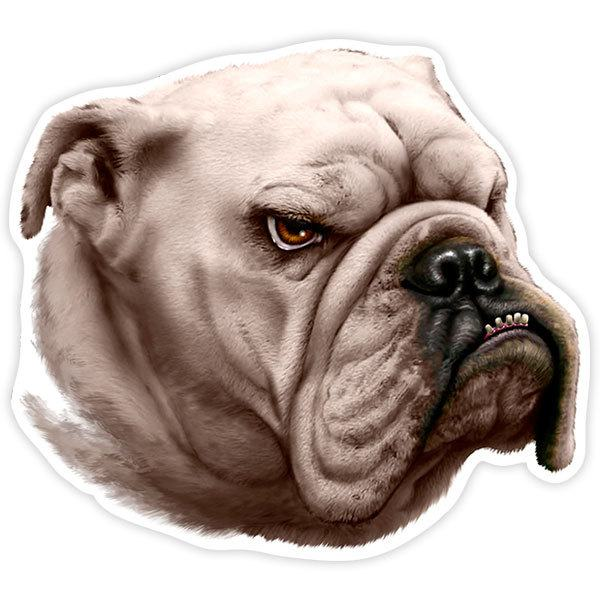 Car and Motorbike Stickers: Bulldog