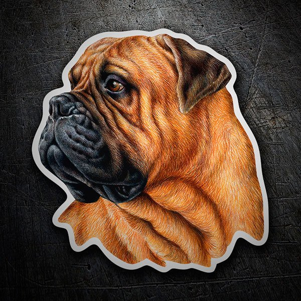 Car & Motorbike Stickers: Bullmastiff