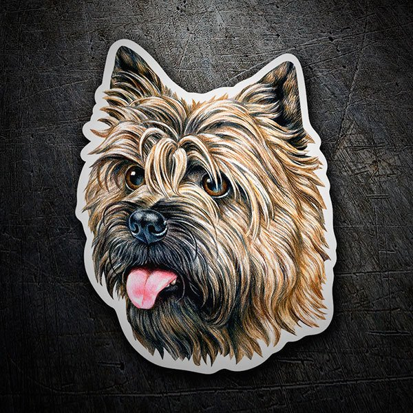 Car & Motorbike Stickers: Cairn Terrier