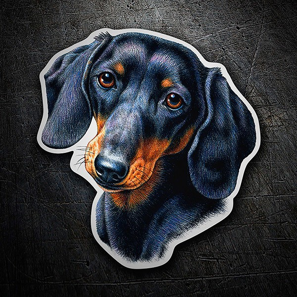 Car & Motorbike Stickers: Dachshund