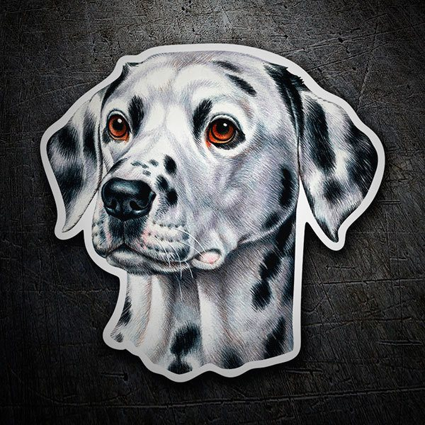 Car & Motorbike Stickers: Dalmatian