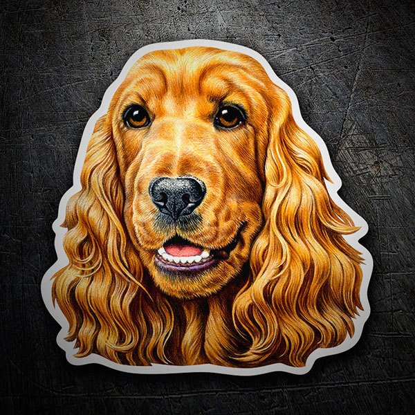 Car & Motorbike Stickers: Cocker Spaniel brown