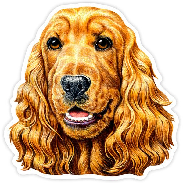 Car and Motorbike Stickers: English Cocker Spaniel