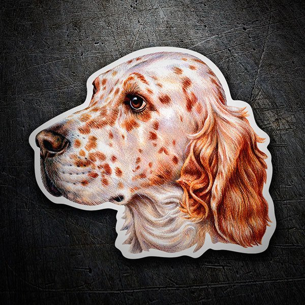 Car & Motorbike Stickers: English Setter