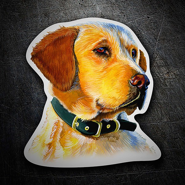 Car & Motorbike Stickers: Golden Retriever
