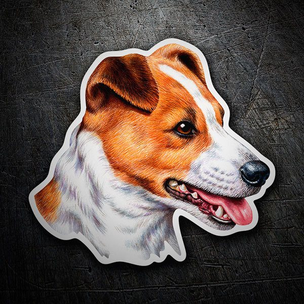 Car & Motorbike Stickers: Jack Russell