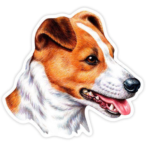 adesivo JACK RUSSEL CANE DOG CHIEN PERRO sticker aufkleber pegatina  prespaziato