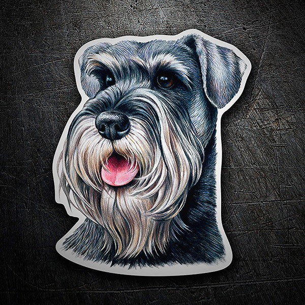 Car & Motorbike Stickers: Schnauzer