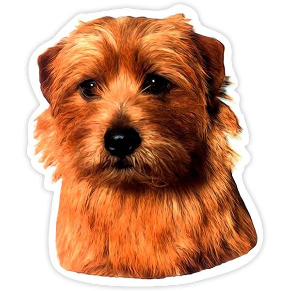 Car and Motorbike Stickers: Norfolk Terrier