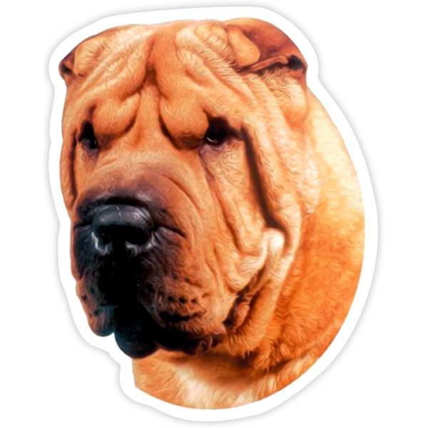 Car and Motorbike Stickers: Shar Pei