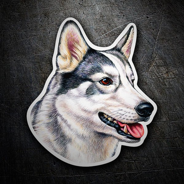 Car & Motorbike Stickers: Siberian Husky