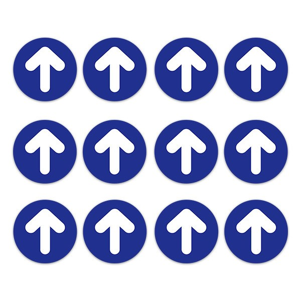 Car & Motorbike Stickers: Set For Floor 12X Blue and White Arrows