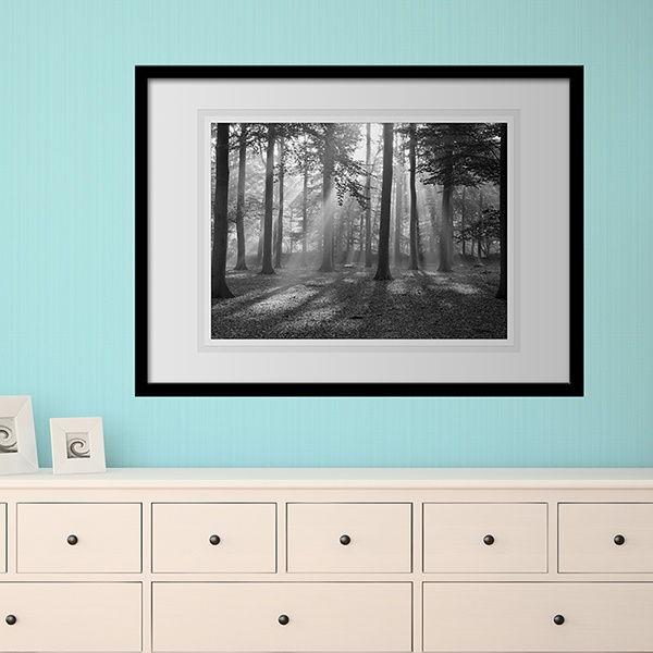 Wall Stickers: Picture Forest Light