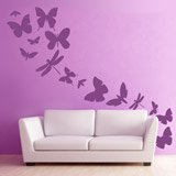 Wall Stickers: Kit 17 Insects 2