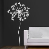 Wall Stickers: Dandelion 2