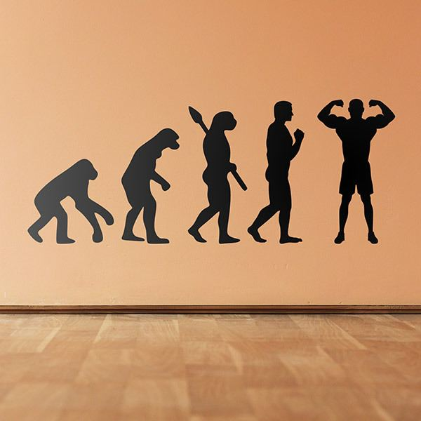 Wall Stickers: Bodybuilding evolution
