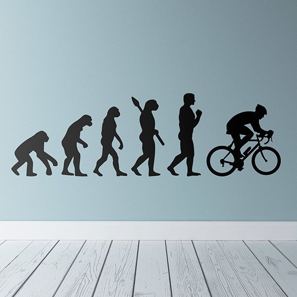 Wall Stickers: Cycling evolution