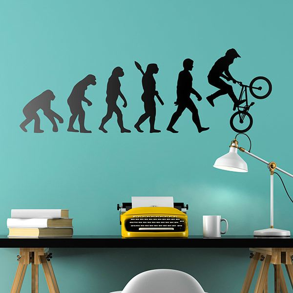 Wall Stickers: BMX Evolution