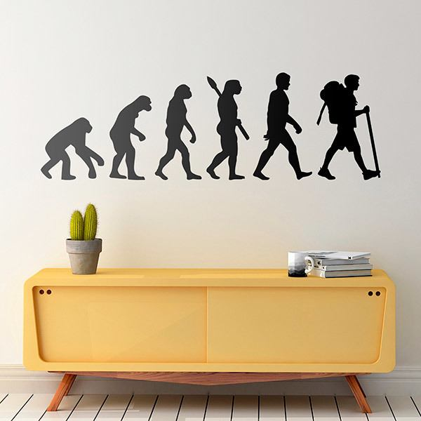 Wall Stickers: Evolution of hiking