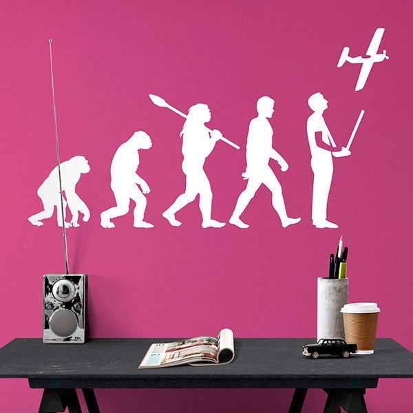 Wall Stickers: RC Aircraft evolution