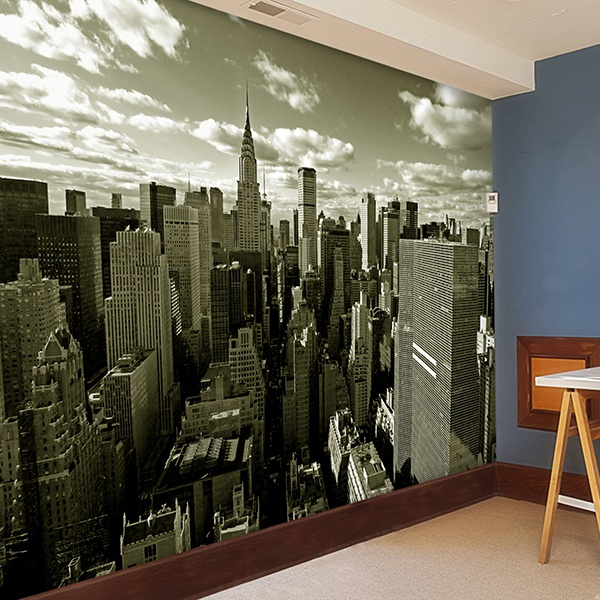 Wall Murals: New York from the air