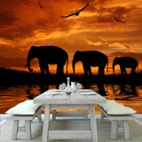 Wall Murals: Elephants migrating 2