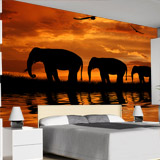 Wall Murals: Elephants migrating 4