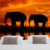 Wall Murals: Elephants migrating 5