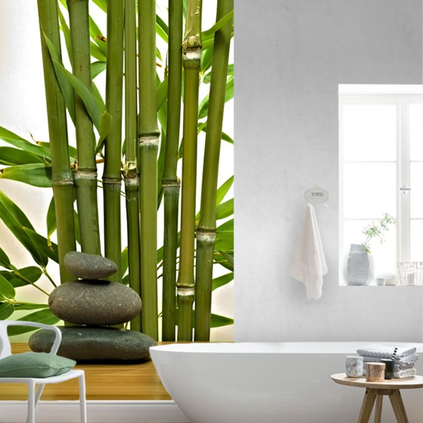 Wall Murals: Bamboo and stones 0