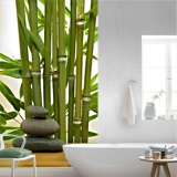 Wall Murals: Bamboo and stones 2