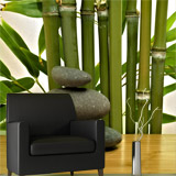 Wall Murals: Bamboo and stones 5