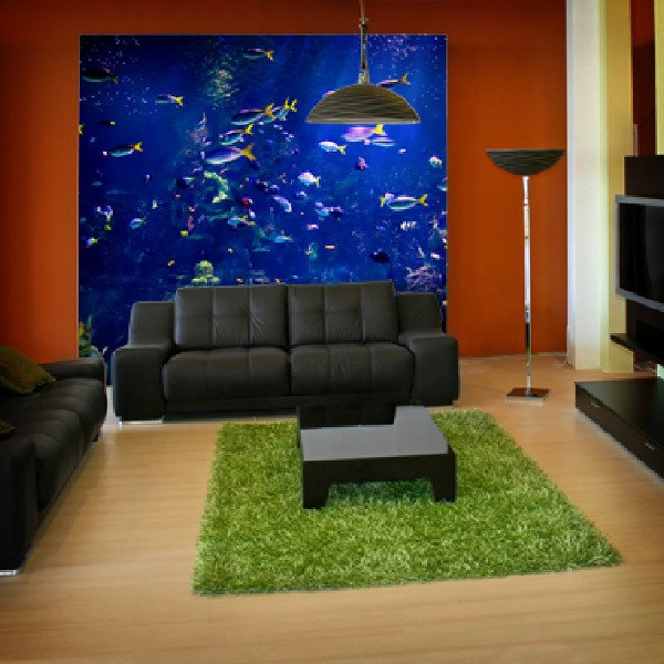 Wall Murals: Reef