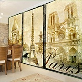 Wall Murals: Classical Paris 2
