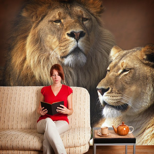 Wall Murals: Lion and lioness