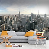 Wall Murals: New York City 2