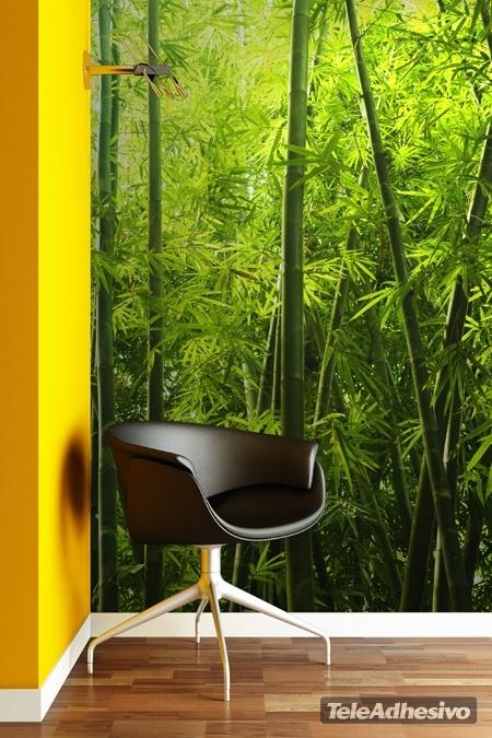 Bambu texture for Bamboo wall mural